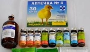 Энростин: инструкция по применению для цыплят