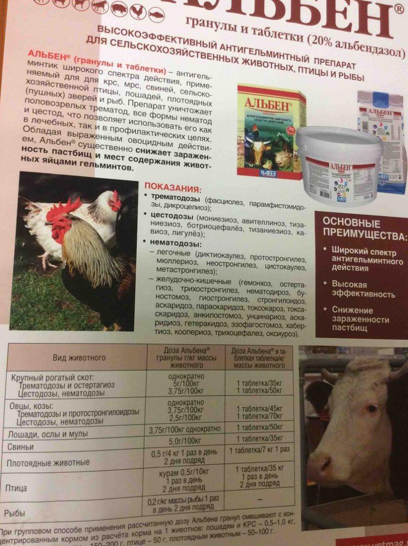 Альбен для кур: инструкция по применению - характеристика препарата, полезные советы, аналогичные препараты