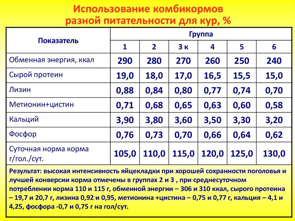 Особенности кормления бройлеров для быстрого роста: сколько съедает за 60 дней