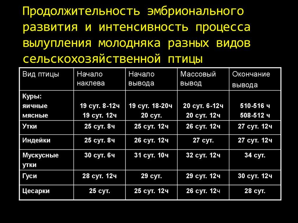 Все об инкубации утиных яиц дома: таблица, температура и влажность по дням