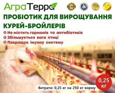 О наболевшем!о кормах для цыплят бройлеров