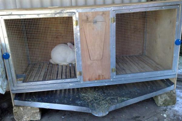 Клетки для кроликов: виды, размеры, конструкции, фото