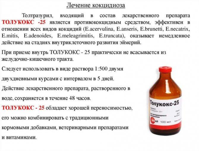 Как давать пиперазин бройлерам - все про паразитов