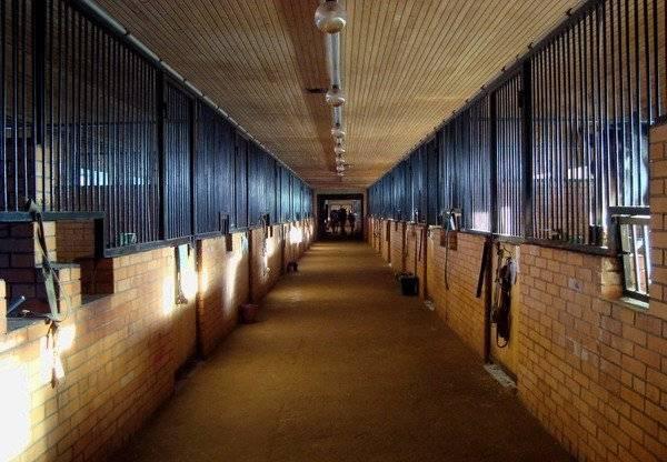 Сооружение комфортного загона для лошадей