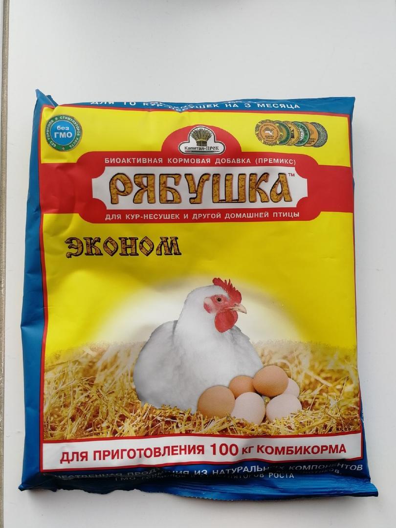 Витамины для яйценоскости кур-несушек: что можно и нельзя давать курицам