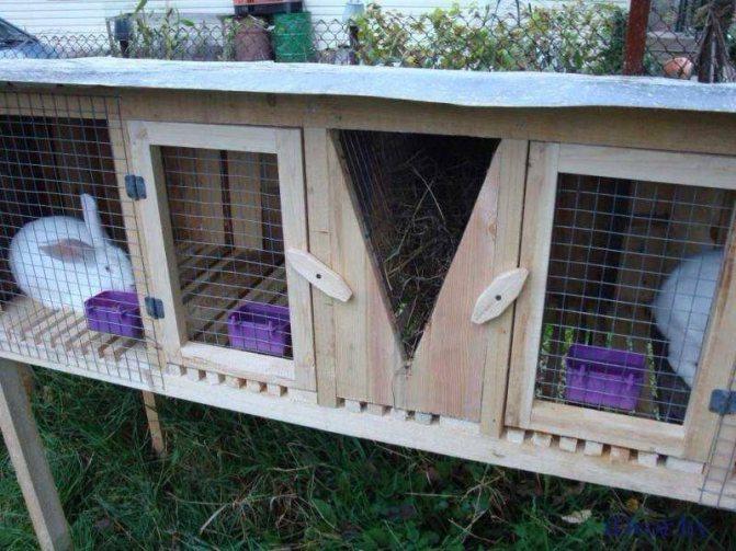 Клетка для кроликов – конструкция, виды, особенности