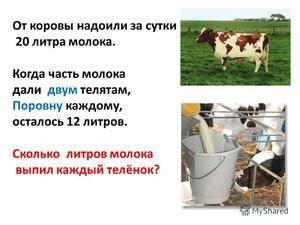 Какая жирность домашнего коровьего молока, от чего она зависит