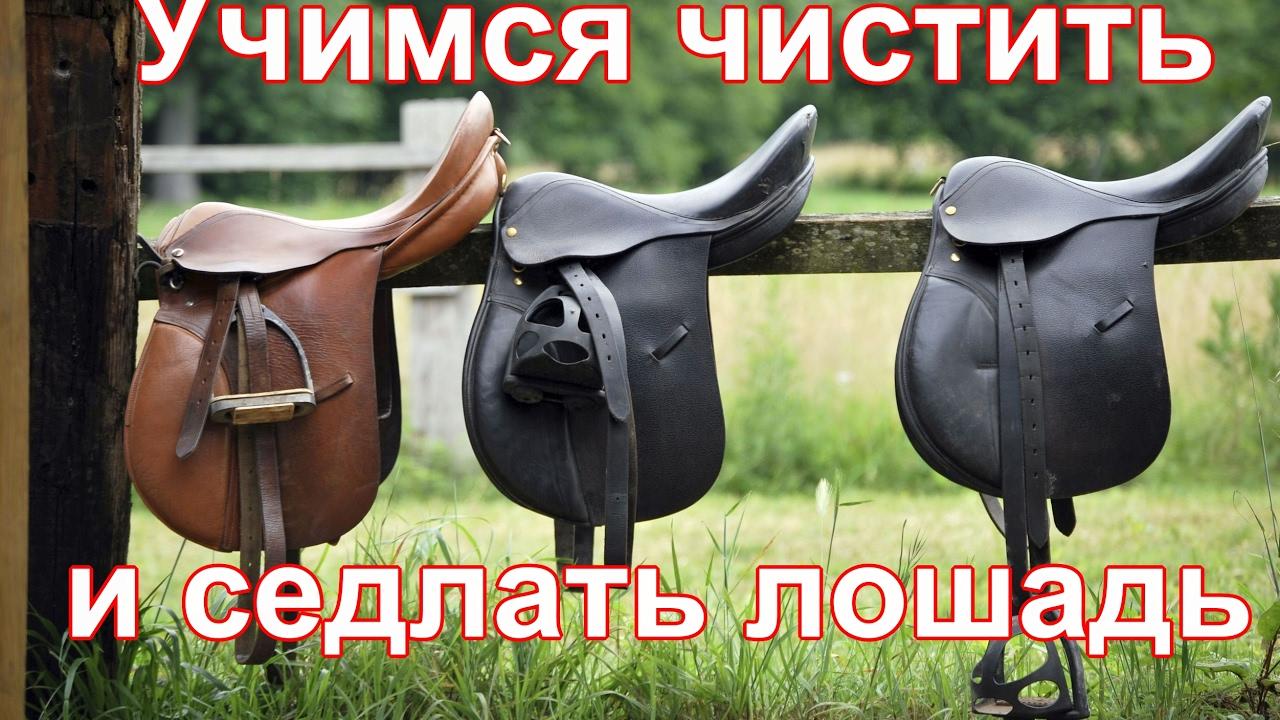 Как седлать лошадь и надевать уздечку