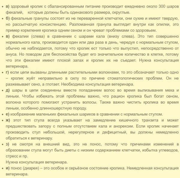 ✅ понос у кролика — причины и лечение, что делать и чем лечить в домашних условиях - tehnomir32.ru