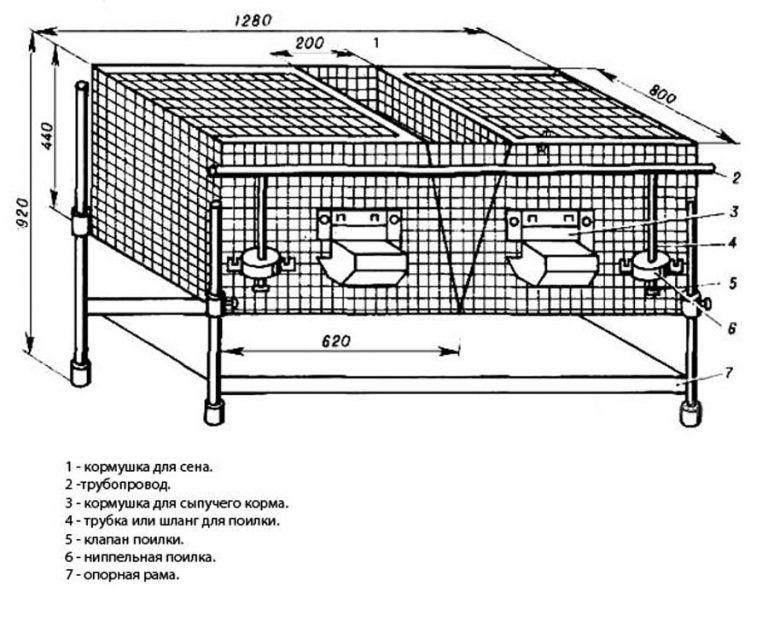 Клетки для кроликов своими руками: чертежи с размерами