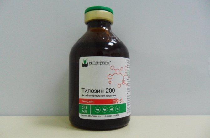 Тилозин 50 и тилозин 200: инструкция по применению в ветеринарии для птиц и животных |