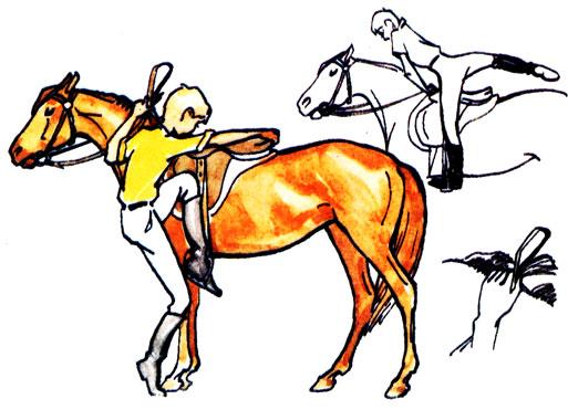 Как приподниматься во время езды рысью на лошади