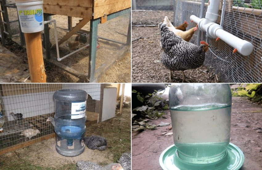 Кормушки для кур из канализационных труб пвх: виды конструкций и советы по изготовлению