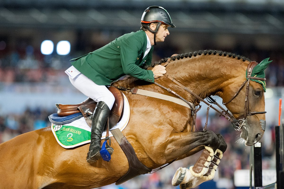 Конный спорт - разновидности конного спорта, интересные факты