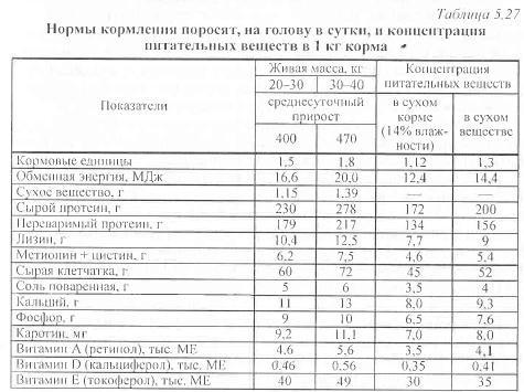 ✅ о кормлении поросят от одного до шести месяцев: чем кормить, рацион - tehnomir32.ru