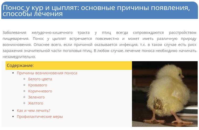 Причины появления и лечение поноса у кур