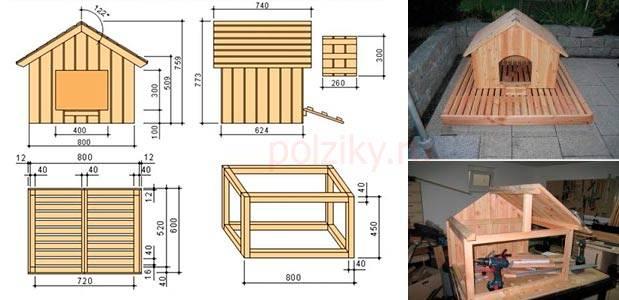 Вольер своими руками: схемы, чертежи, инструкция и советы по постройке вольера (95 фото + видео)