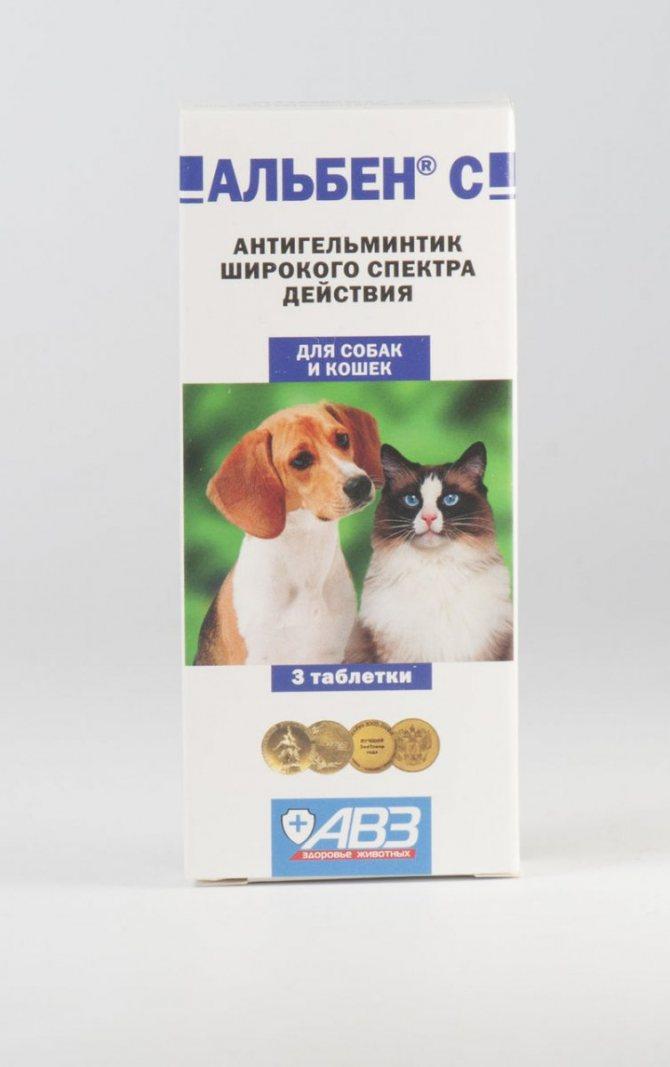 ✅ о симптомах глистов у поросят: как давать альбен, лекарство, инструкция - tehnomir32.ru