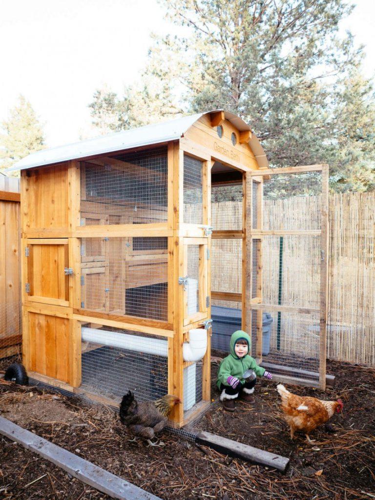 Сарай для кур – как обеспечить птиц жильем своими руками на любой сезон? + видео