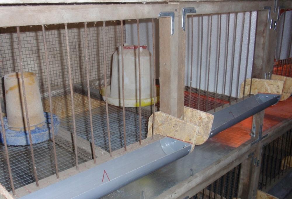 Кормушки для кур из канализационной трубы (24 фото): как сделать ее своими руками из пластиковых и полипропиленовых труб? кормушки для цыплят- бройлеров из пвх
