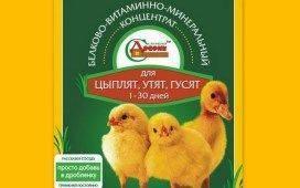 """""""чиктоник"""": инструкция по применению для птиц, описание препарата"""