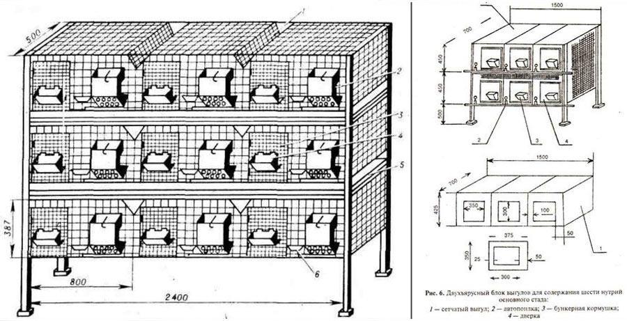 Как сделать клетки для бройлеров своими руками?