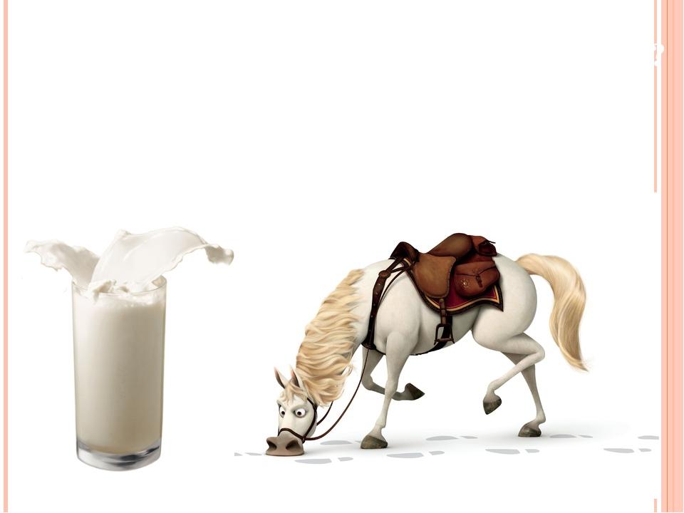 Молоко лошади: как доят кобылу и как называется напиток из ее молока