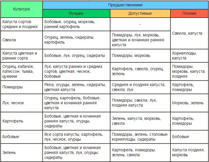 Что можно посадить после капусты – планируем посадки на следующий год | на грядке (огород.ru)