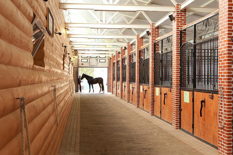 Денник для лошади: описание, как построить