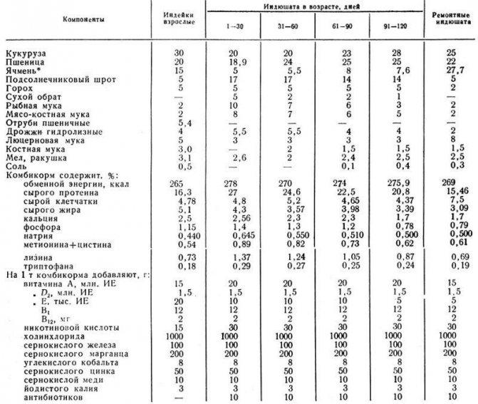 Вес индюка по месяцам — максимальный в 1, 2, 3, 6 месяцев