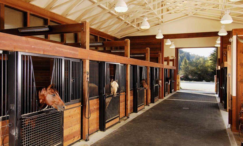 Мастер-класс по строительству конюшни и загона для лошадей |