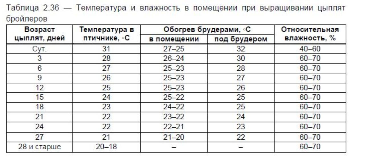 Температура для цыплят бройлеров режим и климат для кур - дневник садовода amparagroup.ru