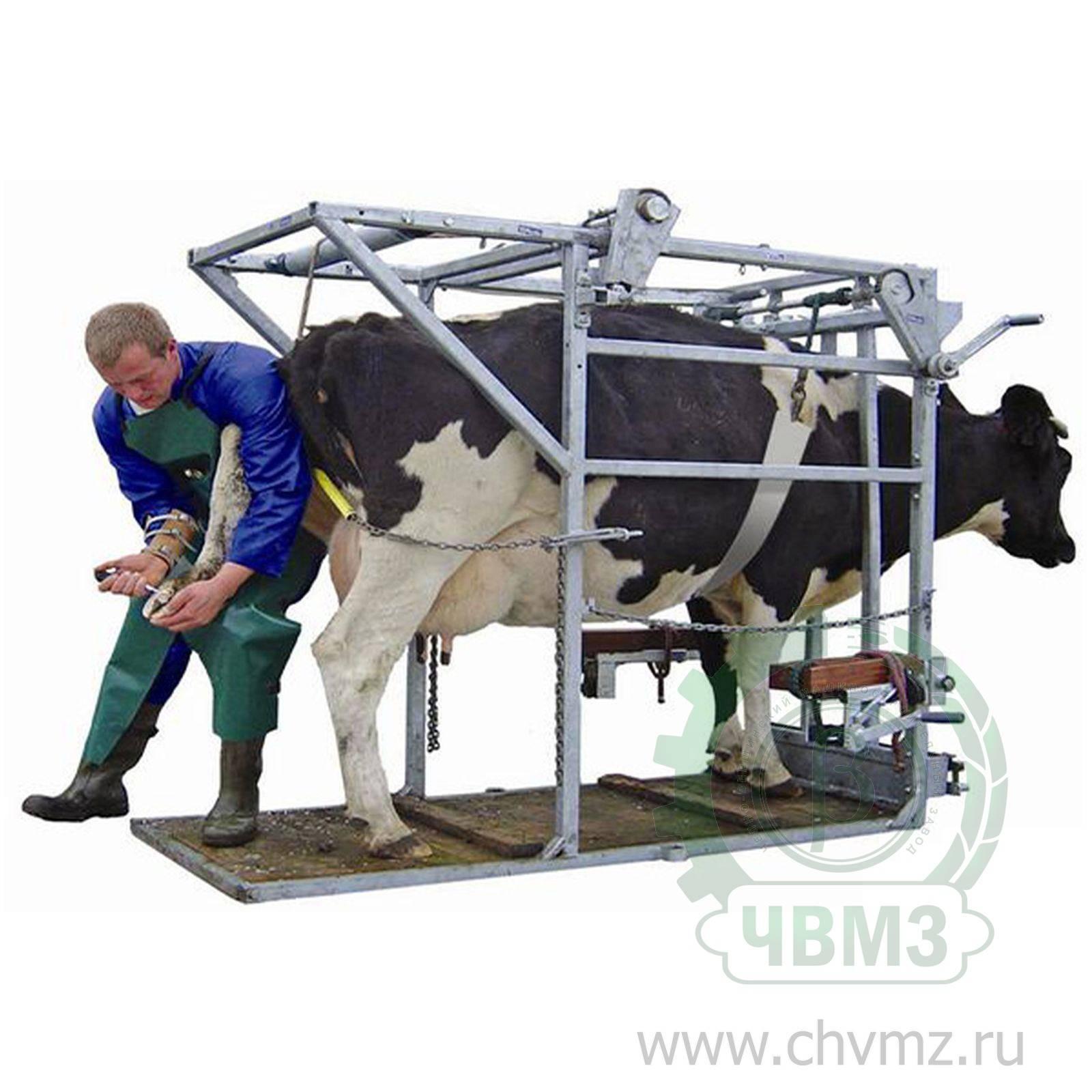 Станок для ветеринарных процедур и обработки копыт скота - усс-агро
