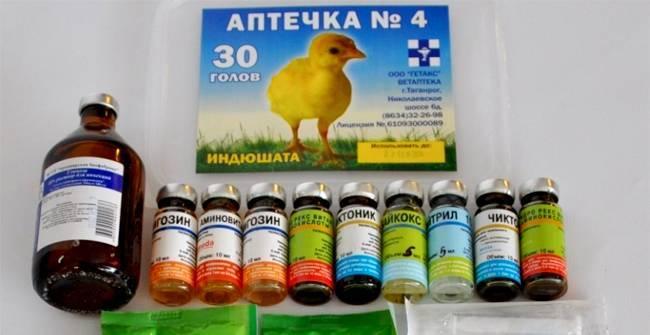 Тривит для цыплят. витамины для цыплят бройлеров при профилактике различных заболеваний