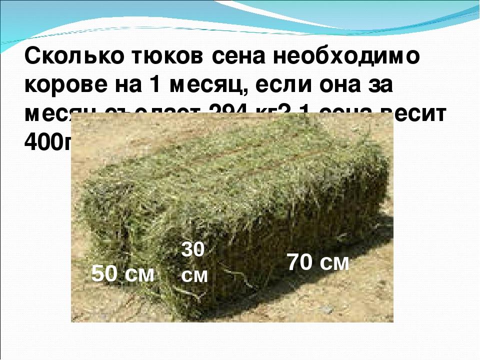 Сколько корова съедает травы? - сельское хозяйство