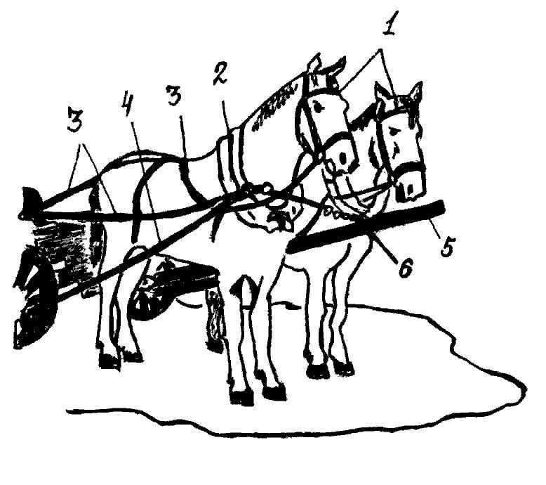 Конская упряжь — основные элементы, требования и особенности (3 стр.)