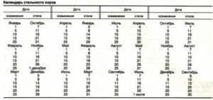 Отел коровы: самая точная таблица отела, особенности периода. сколько дней корова ходит до отела? что делать дальше?