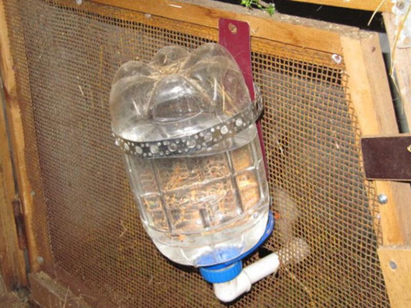 Как сделать кормушку для кур: 120 фото идей по обустройству кормушек в курятнике и загоне