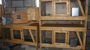 Как сделать клетку для кролика, пошаговое описание