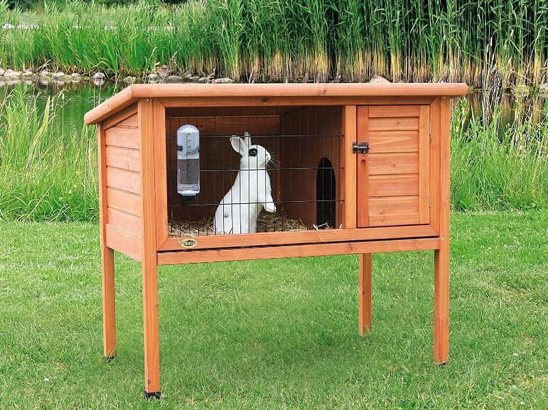 Дом для кроля