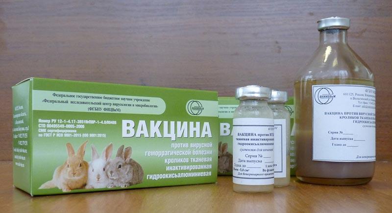 Вакцина против ВГБК