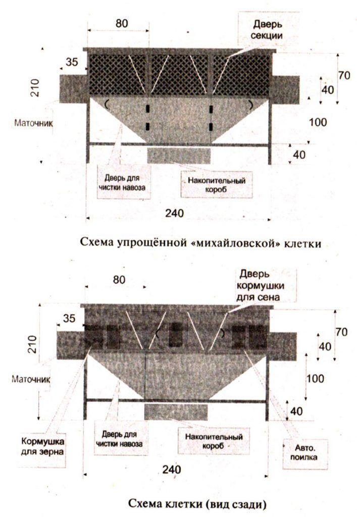 Чертежи клетки по Михайлову
