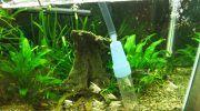 Сифон для аквариума: для чего и какой выбрать