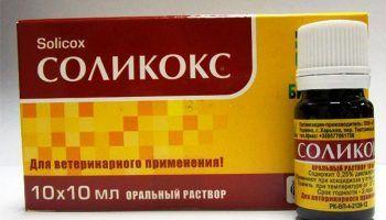 Соликокс для кроликов — средство для лечения кокцидоза