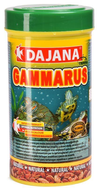 Даджана Гаммарус
