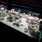 Пустой аквариум со светодиодами