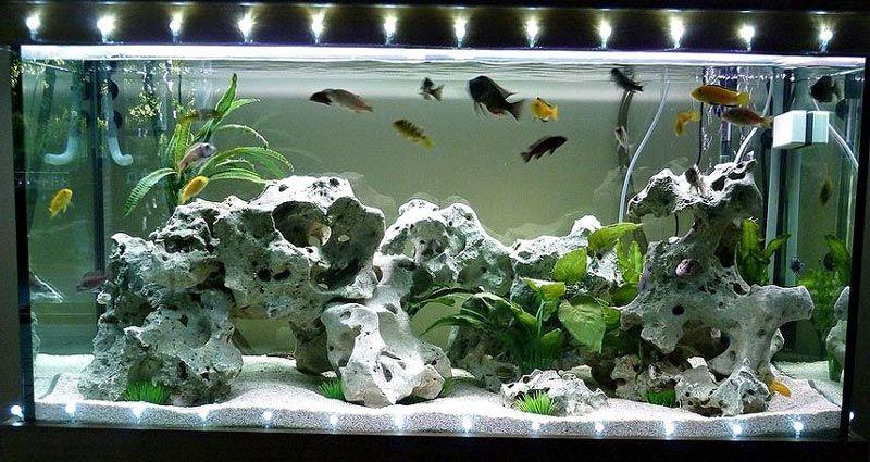 Лента светодиодная в аквариуме