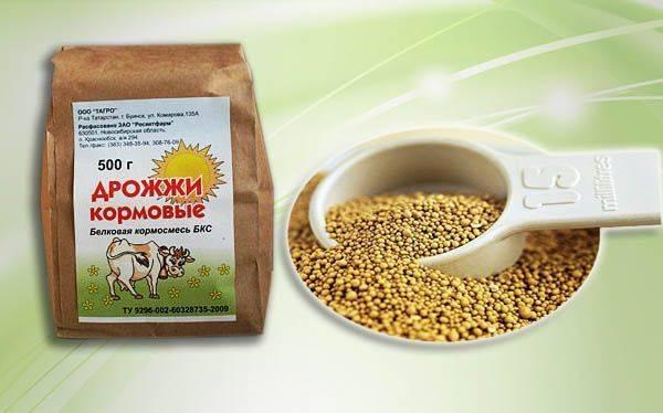 ✅ дрожжи кормовые для кур: для чего, сколько и как правильно давать - tehnoyug.com
