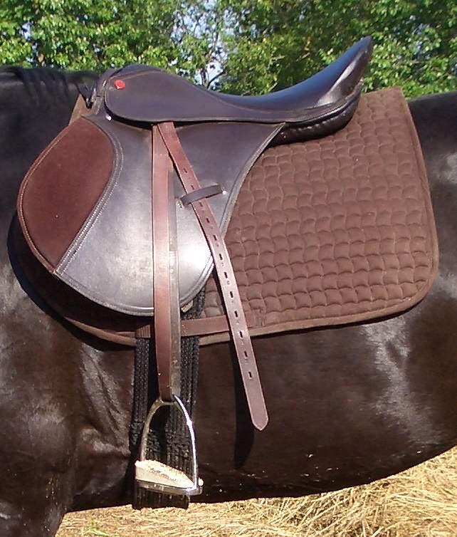 Как седлать лошадь и надевать уздечку | мои лошадки
