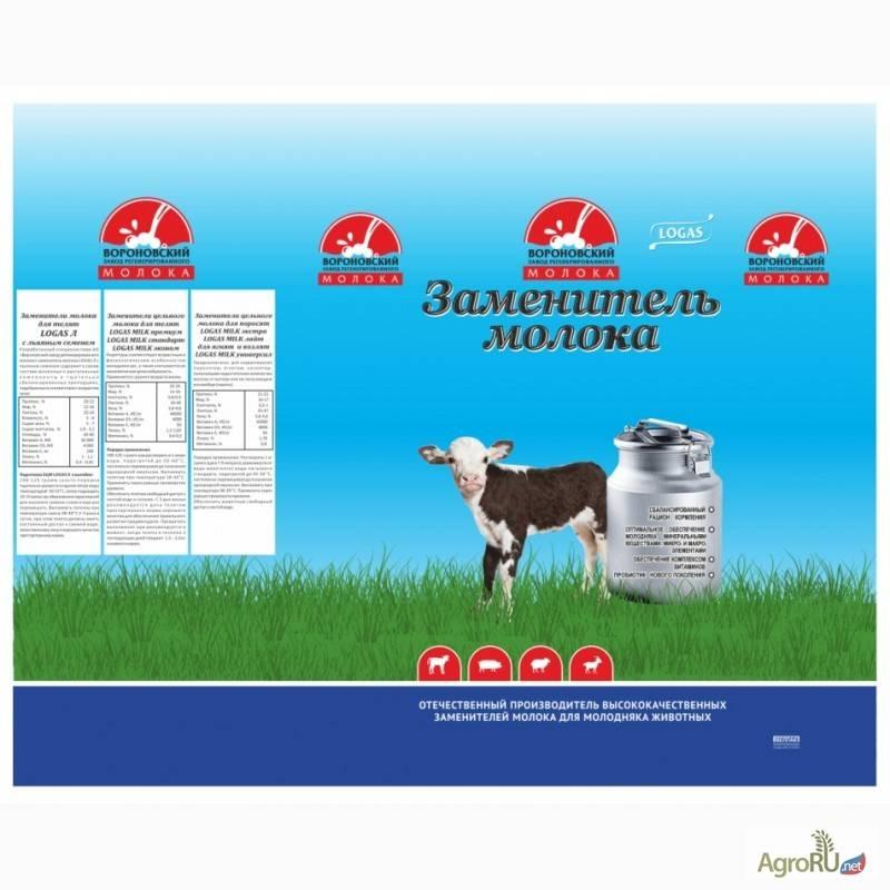 Заменитель цельного молока для телят: виды, как его выбрать и разводить?